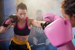 Kvinnliga idrottsman nen som slåss i boxningsring Arkivbild