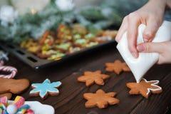 Kvinnliga kakor för pepparkaka för handmålarfärgjul Royaltyfria Foton