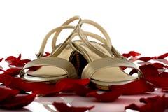 kvinnliga sandals Arkivfoto