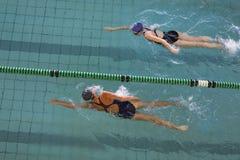 Kvinnliga simmare som springer i simbassängen Royaltyfria Bilder