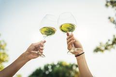 Kvinnliga vänner hurrar att klirra exponeringsglas av vitt vin fotografering för bildbyråer