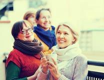 Kvinnliga vänner på sommarterrass Fotografering för Bildbyråer