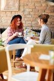 Kvinnliga vänner som dricker cappuccino i bar fotografering för bildbyråer