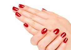 Kvinnlighänder med den röda manicuren Royaltyfria Foton