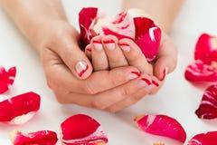 Kvinnlighänder med spikar fernissa som rymmer Rose Petals Arkivfoto