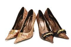 kvinnligisolator parar skor två Fotografering för Bildbyråer