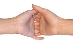 Kvinnlign gömma i handflatan med flätade samman fingrar Arkivbilder
