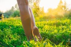 Kvinnlign lägger benen på ryggen barfota att gå på gräset Arkivbild