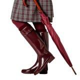 Kvinnlign lägger benen på ryggen i en kjol i en bur, i den burgundy strumpbyxor och i c Arkivfoto