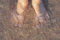 Kvinnlign pedicured fot på det steniga havsgolvet som var synligt till och med kristallklart vatten Kvinnlig fot i klart anseende arkivbilder