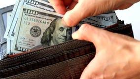 Kvinnlign räcker att räkna hundra dollarräkningar i plånbok arkivfilmer