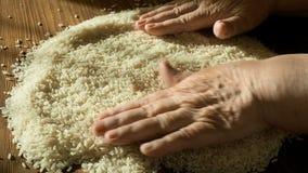 Kvinnlign räcker att välja bästa ris för att laga mat, rörande korn för handen som är sunt bantar, stänger sig upp stock video