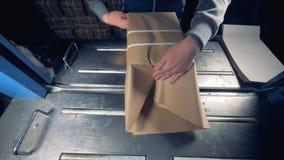 Kvinnlign räcker emballageprodukter in i den pappers- asken på industrianläggningen stock video