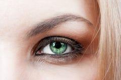 Kvinnligs gröna öga Fotografering för Bildbyråer