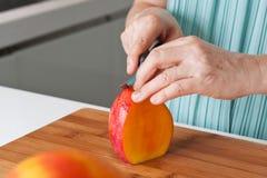 Kvinnligs händer som klipper en ny mango Fotografering för Bildbyråer