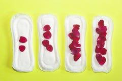 Kvinnligs hygienprodukter på gul bakgrund Begrepp av kritiska dagar, menstruations- cirkulering, perioddagar, PMS fotografering för bildbyråer