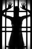 Kvinnligsilhouette Royaltyfri Fotografi