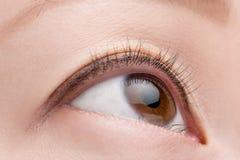 Kvinnligt öga för makro Fotografering för Bildbyråer