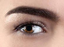 Kvinnligt öga med ögonfransförlängningar royaltyfri fotografi