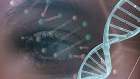 Kvinnligt öga med DNAmodellen stock video