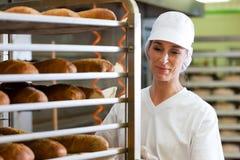 Kvinnligt bagarebakningbröd Arkivfoton