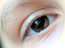 Kvinnligt högert öga Royaltyfri Fotografi