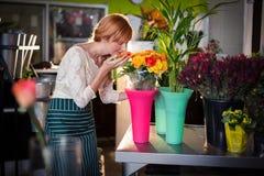 Kvinnligt lukta för blomsterhandlare steg blommor Royaltyfri Bild