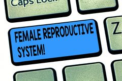 Kvinnligt reproduktivt system för ordhandstiltext Affärsidé för ansvarig i reproduktion av det nya avkommatangentbordet arkivbild