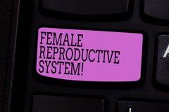 Kvinnligt reproduktivt system för ordhandstiltext Affärsidé för ansvarig i reproduktion av det nya avkommatangentbordet royaltyfria bilder
