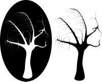 Kvinnligt träd Arkivbilder
