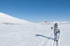 Kvinnligt turnera skieren i backcountry skidar spårar Royaltyfri Foto
