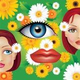 Kvinnor är härliga som blommor stock illustrationer