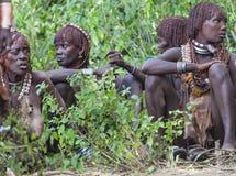 Kvinnor får klara för att dansa på tjurbanhoppningceremoni Turmi Omo dal, Etiopien Arkivbild