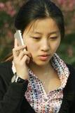 kvinnor för affärsholdingtelefon Arkivfoto