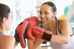 kvinnor för boxningidrottshall tillsammans Fotografering för Bildbyråer