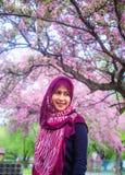 Kvinnor för en muslim med det sakura trädet Arkivbilder