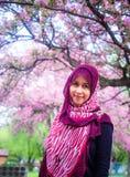 Kvinnor för en muslim med det sakura trädet Royaltyfria Bilder