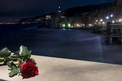kvinnor för romantisk solnedgång för aftonmän väntande Royaltyfri Bild