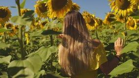 Kvinnor i fältet av solrosor stock video