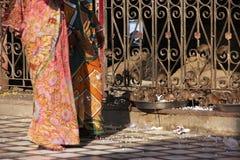 Kvinnor i färgrik sari som går på Karni Mata Temple, Deshnok, in arkivfoto