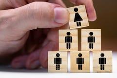 Kvinnor i ledarskappositioner eller befordran som en kvinna royaltyfri bild