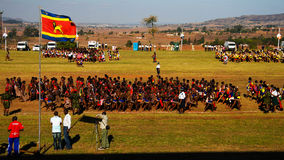 Kvinnor i traditionella dräkter som dansar på Umhlangaen aka Reed Dance för deras konung Lobamba, Swaziland Arkivfoton