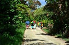 Kvinnor i Vanuatu arkivfoton