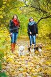 Kvinnor med hundkapplöpning royaltyfri foto