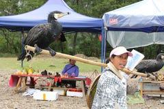 Kvinnor med kormoran som används för cathing av fisken i den Li floden Arkivbild
