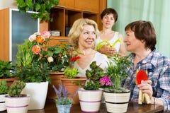 Kvinnor och flickan nära bordlägger med blomkrukor Royaltyfria Foton