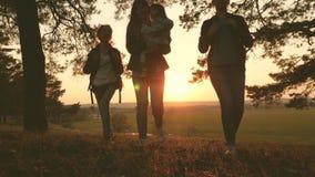 Kvinnor reser, går till och med skogen, beundrar landskapet på solnedgången Fotvandrareflicka handelsresande mamma och döttrar re lager videofilmer