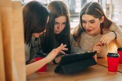 Kvinnor som beskådar katalogen på online-lagret Online-shopping, fritid, Royaltyfri Bild