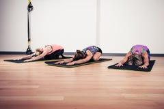Kvinnor som gör yoga i idrottshall Royaltyfri Fotografi