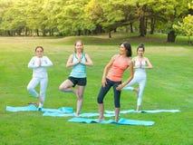 Kvinnor som gör yoga parkerar in Royaltyfri Foto